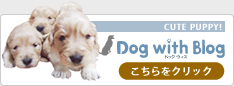 dog with blog